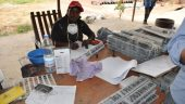 A worker logs chip samples at Avnel Gold's Kalana gold project in West Africa. Credit: Avnel Gold