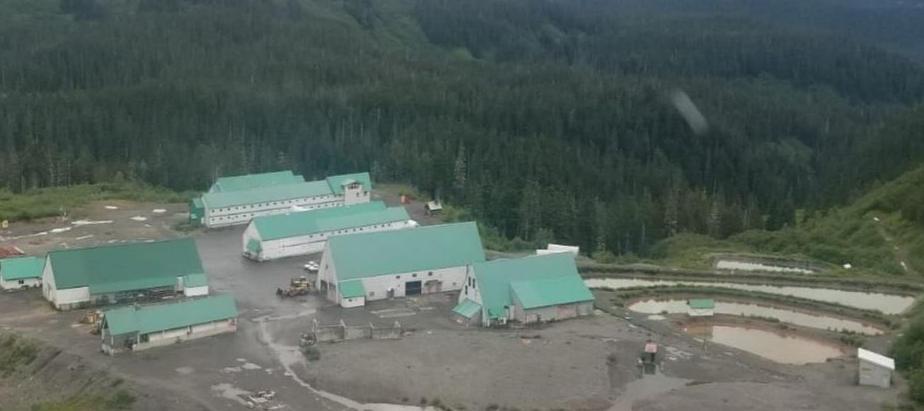 eskay mining news