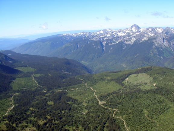 Yellowhead copper project area in B.C. Credit: Taseko Mines