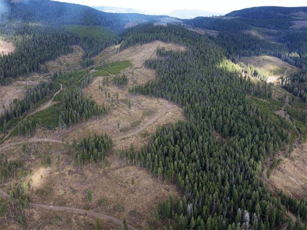 Westhaven Ventures' Shovelnose gold project, in B.C. Credit: Westhaven Ventures