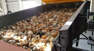 Raw material fed into the sorting process Credit: Tomra