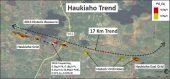 Haukiaho trend Credit: Palladium One