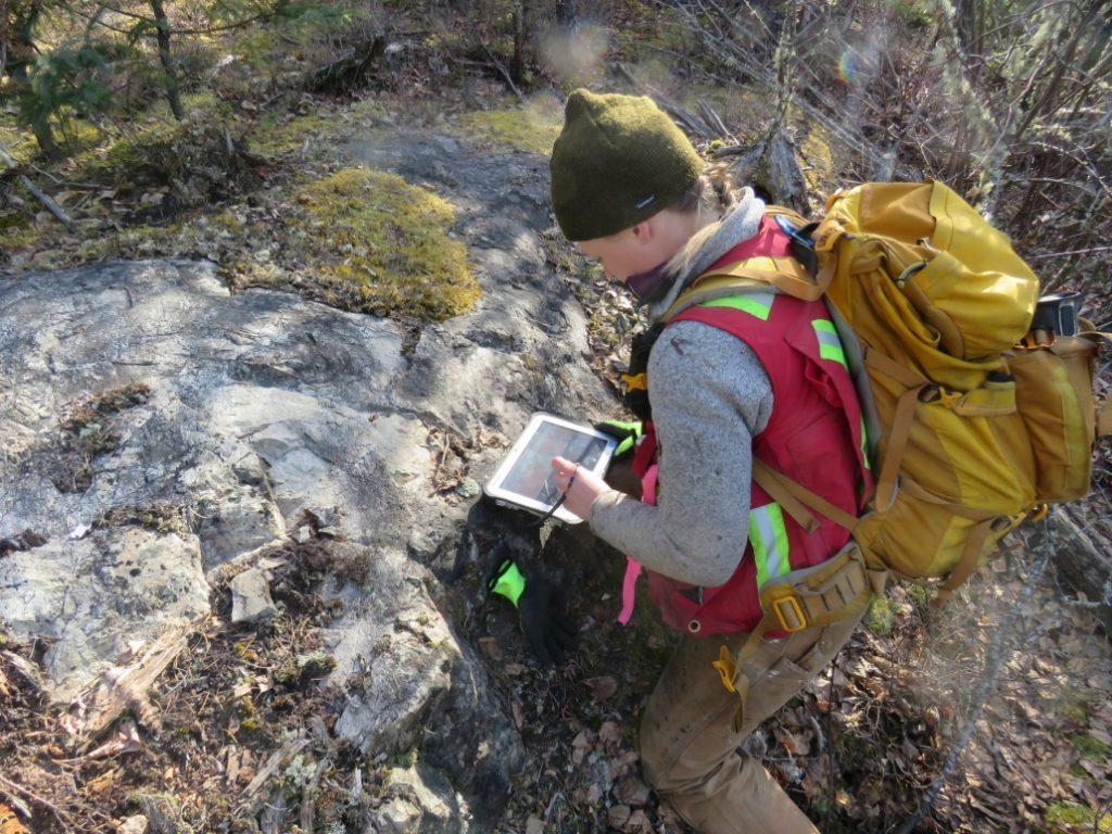 Fieldwork at Dixie Credit: Great Bear