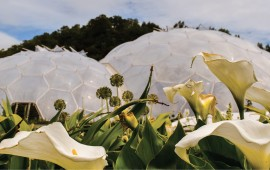 The Eden Project in the U.K., an eco-park developed in a reclaimed china clay pit, opened in 2001 Photo: Emily Barnes, IStockimages.com