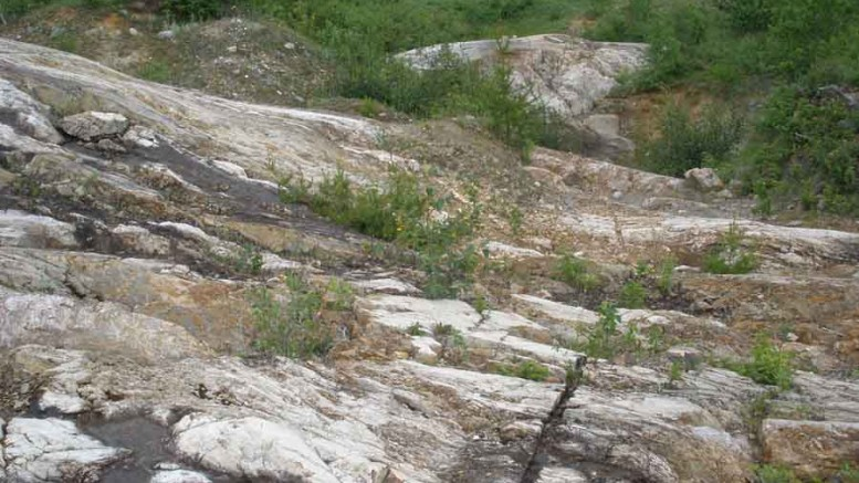 An outcrop at the Juby gold project in Ontario. Credit: Temex Resources