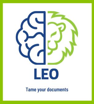 LEO software Credit: Minerva Intelligence