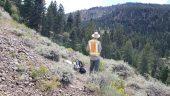 Freeman Creek property Credit: Gaia Metals