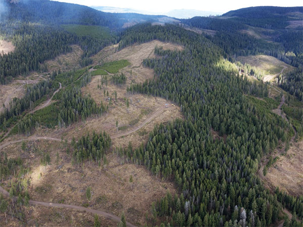 Westhaven Gold's Shovelnose project in B.C. Credit: Westhaven Gold