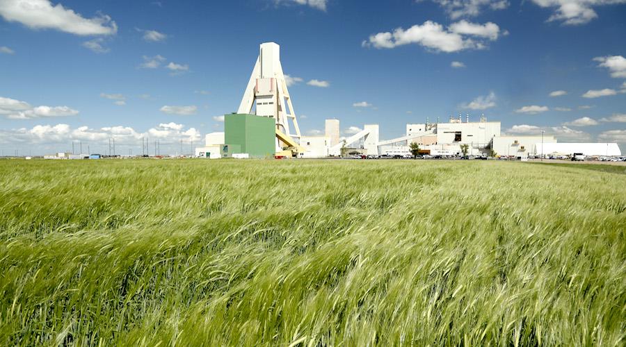 Nutrien to further boost potash output amid Belarus sanctions